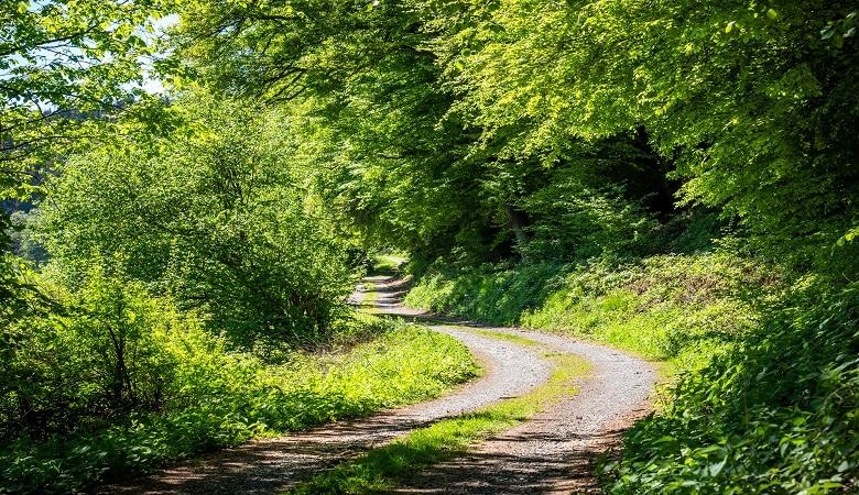Fahrrad fahren durch die Eifel