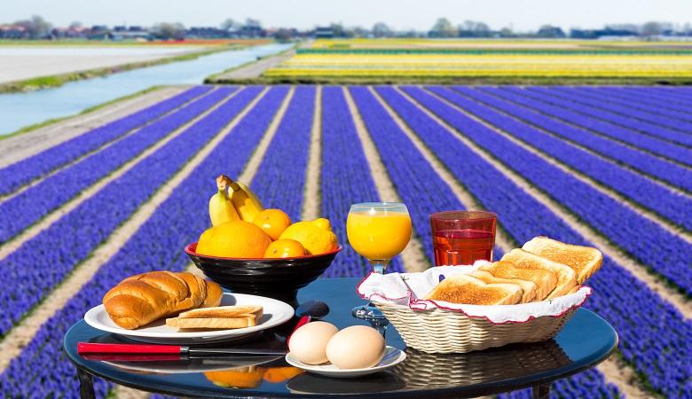 Unterkünfte in der Nähe von Tulpenfeldern in Holland