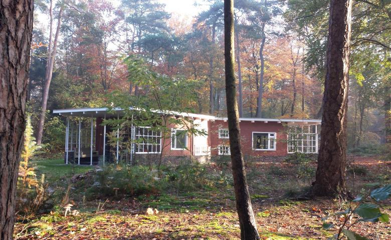 Ferienhaus mitten im Wald