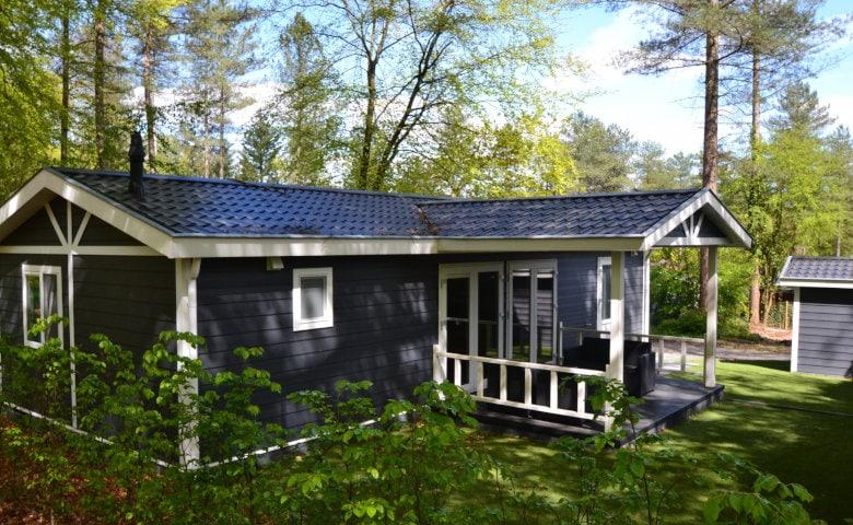 Urlaub im Wald in Hollan im Ferienhaus mitten im Wald