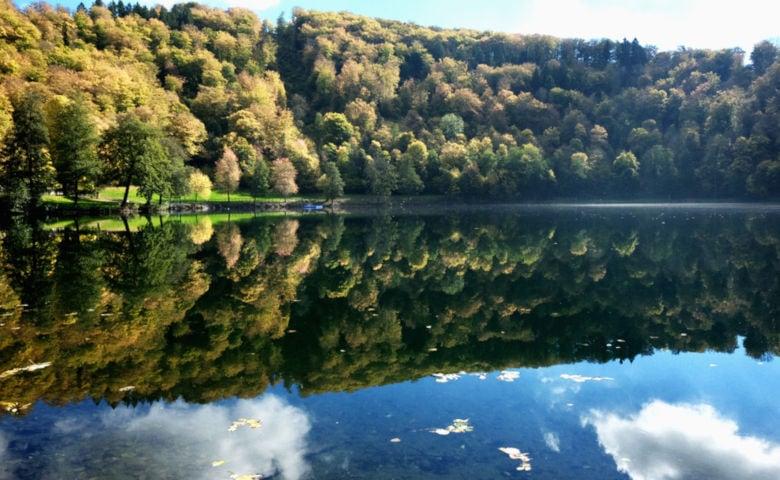 Urlaub in der Eifel im Wald mit der Familie
