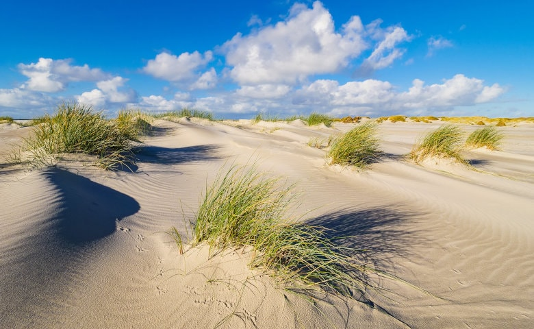 wandernde Sandbank in Amrum