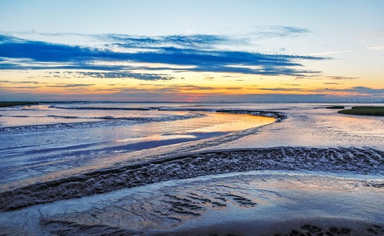 Tagesausflug Nordsee zum Wattenmeer